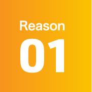 Reason 01